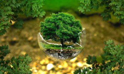 EU und Russland sollen beim Klimaschutz eng zusammenarbeiten